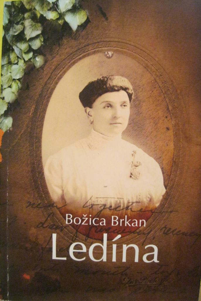 B.Brkan, LEDINA, naslovnica