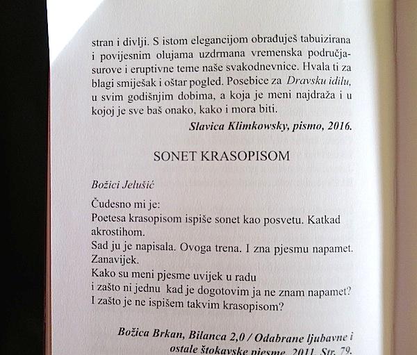 knjjelusic06-dorada-bbpjesma