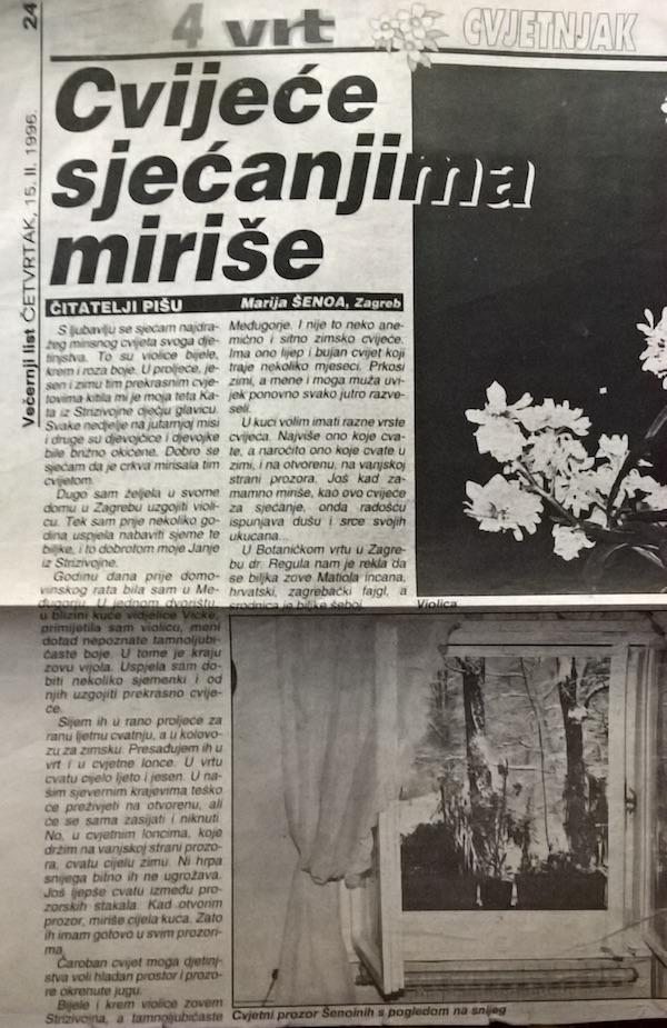 Članak Marije Šenoe iz Večernjakova Vrt, 1995.Članak Marije Šenoe iz Večernjakova Vrt, 1995.