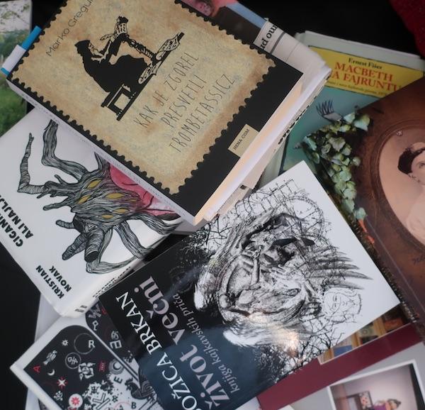 Neke od recentnih kajkavskih knjiga (Fotografija Božica Brkan)